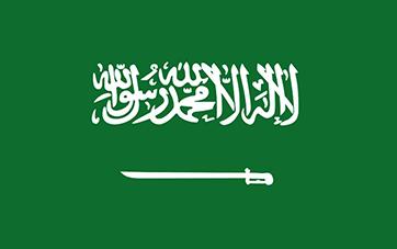 Rino de Arabia Saudita